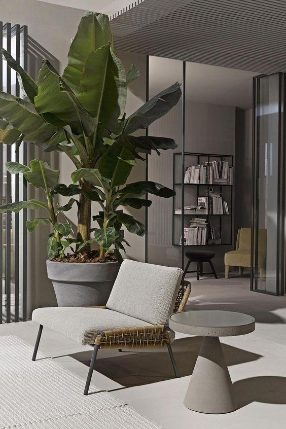 thiết kế nhà ở với không gian cây xanh